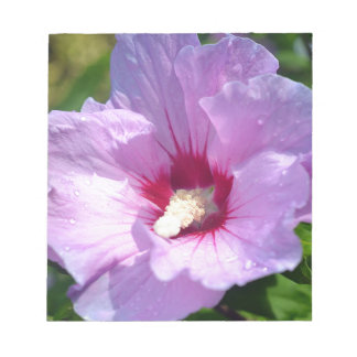 Rose of Sharon Notepad