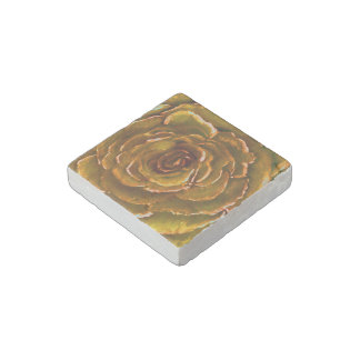 Rose of Yellow Stone Magnets