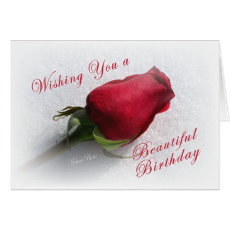 Rose on the Snow - personalize  the message Greeting Card