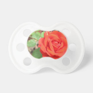 rose pacifier