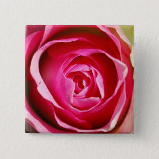 Rose Pedals 2 Inch Square Button