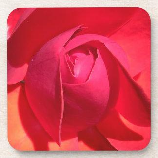 Rose Petals Coaster