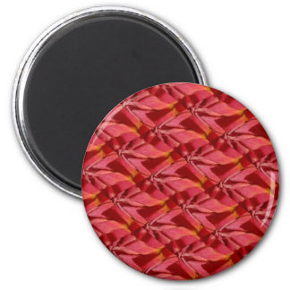 Rose Pink Burgundy Abstract Design 2 Inch Round Magnet