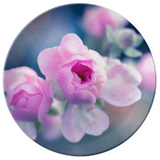 rose porcelain plate