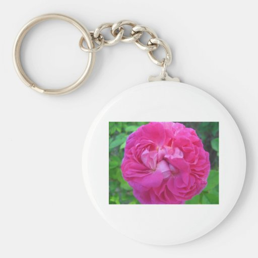 rose,pretty pink rose keychain