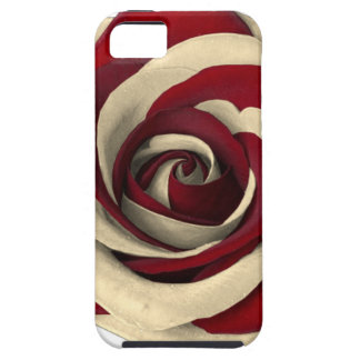 Rose Red iPhone 5 Cover