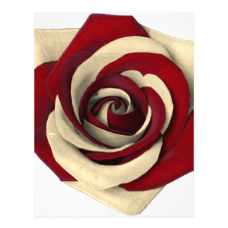 Rose Red Letterhead