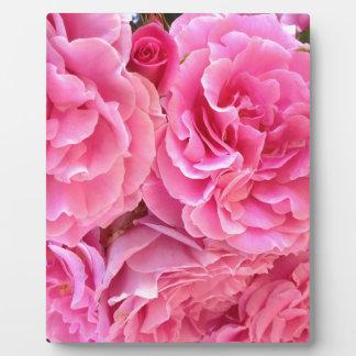 Rose Roses by Carolina Ramos Ferrer Plaque