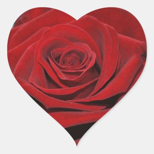 rose rouge autocollants en forme de coeur zazzle. Black Bedroom Furniture Sets. Home Design Ideas