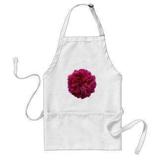 Rose rouge froncé de jardin anglais de pays tablier