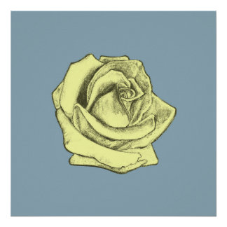 Rose Sketch Yellow Tint on Blue Poster