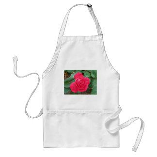 rose standard apron