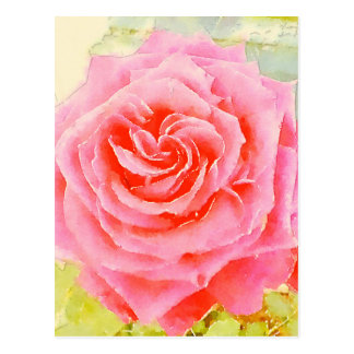 Rose Watercolor Postcard