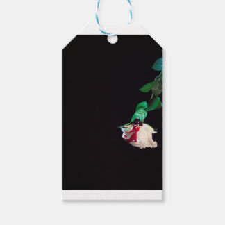Rose white blood red side gift tags