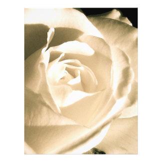 Rose White Flyer Design