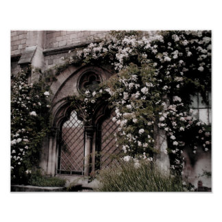 Rose Window Poster Print