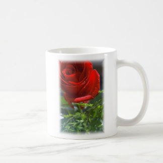 Rose with star Coffee cup