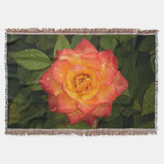 Rose with water drops throw blanket