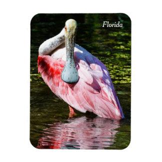 Roseate Spoonbill Florida Magnet