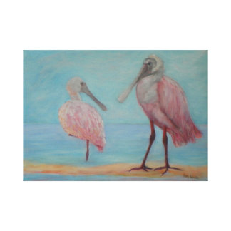 ROSEATE SPOONBILLS IN FLORIDA Canvas Print