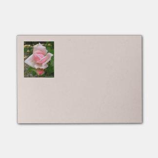 Rosebud 4x3 Post Its Post-it Notes