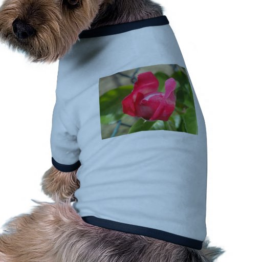 Rosebud Doggie Shirt