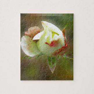 rosebud glowing jigsaw puzzle