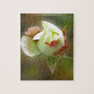 rosebud glowing puzzle