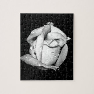 Rosebud in Black and White Puzzle