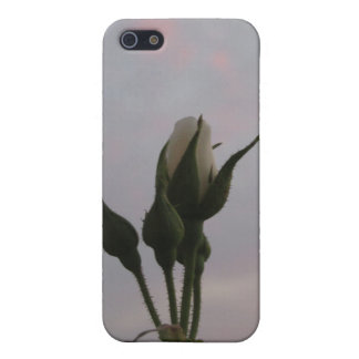 Rosebud iPhone 5 Covers
