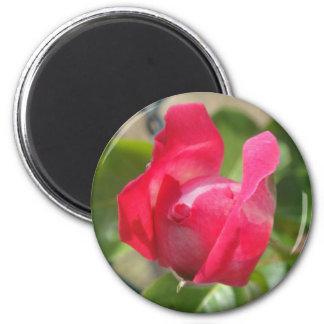 Rosebud Fridge Magnet