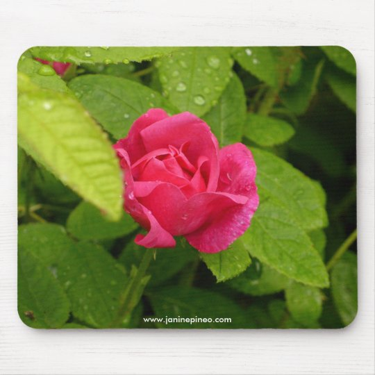 Rosebud mousepad