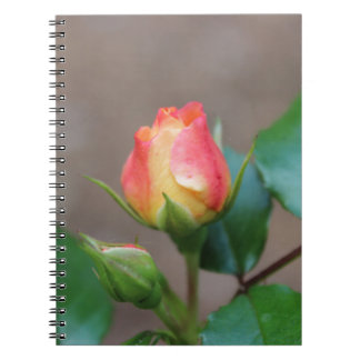 Rosebud Notebook