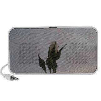 Rosebud Portable Speaker