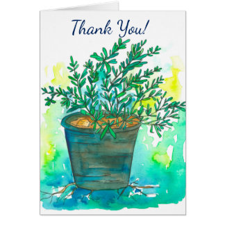 Rosemary Drawing Thank You Card
