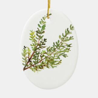 Rosemary herb Rosemary watercolour painting Ceramic Oval Ornament