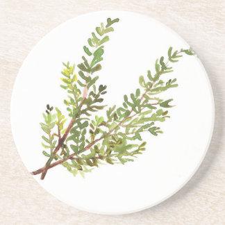 Rosemary herb Rosemary watercolour painting Coaster