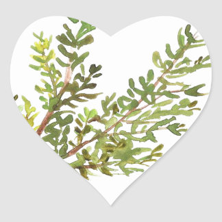 Rosemary herb Rosemary watercolour painting Heart Sticker