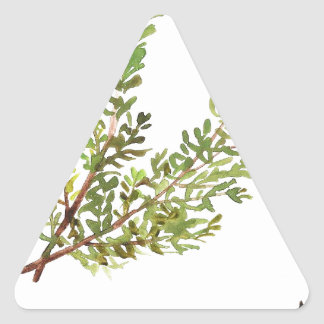 Rosemary herb Rosemary watercolour painting Triangle Sticker