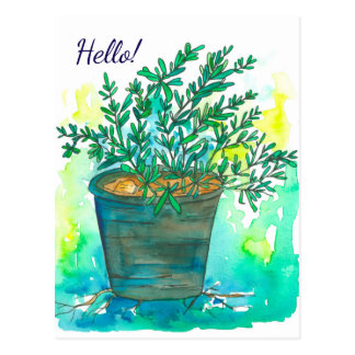 Rosemary Herb Watercolor Hello Postcard