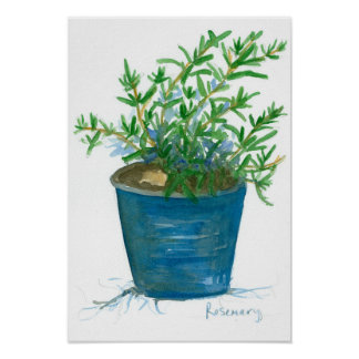 Rosemary Kitchen Herb Plant Watercolor Painting Poster