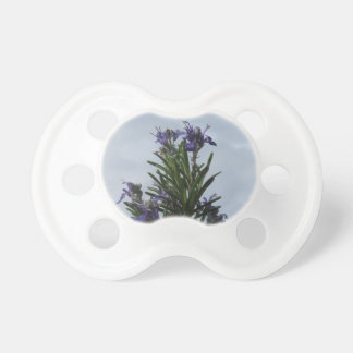 Rosemary plant with flowers against the sky baby pacifiers