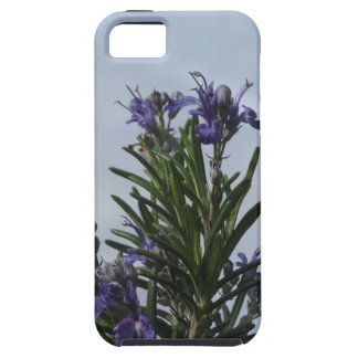 Rosemary plant with flowers against the sky iPhone 5 case