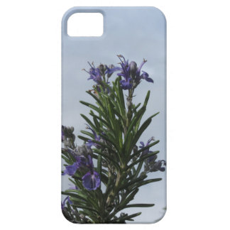 Rosemary plant with flowers against the sky iPhone 5 cover