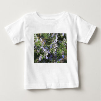 Rosemary plant with flowers in Tuscany, Italy Baby T-Shirt