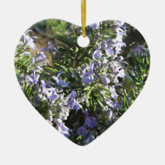 Rosemary plant with flowers in Tuscany, Italy Ceramic Heart Ornament