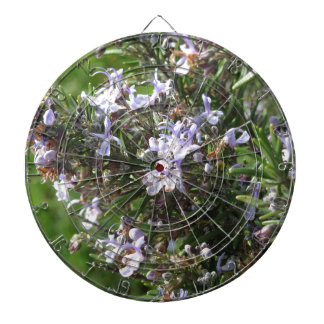 Rosemary plant with flowers in Tuscany, Italy Dartboard