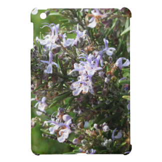 Rosemary plant with flowers in Tuscany, Italy iPad Mini Cover