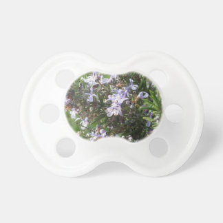 Rosemary plant with flowers in Tuscany, Italy Pacifier