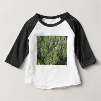 Rosemary plant with flowers . Tuscany, Italy Baby T-Shirt